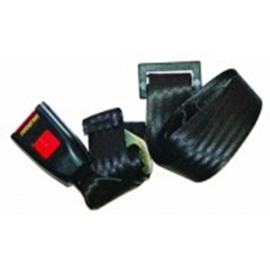 Picture of Rear Lap Seat Belt