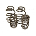 Picture of H & R T25 lowering sport springs 45 to 50mm